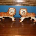 Staffordshire Lions